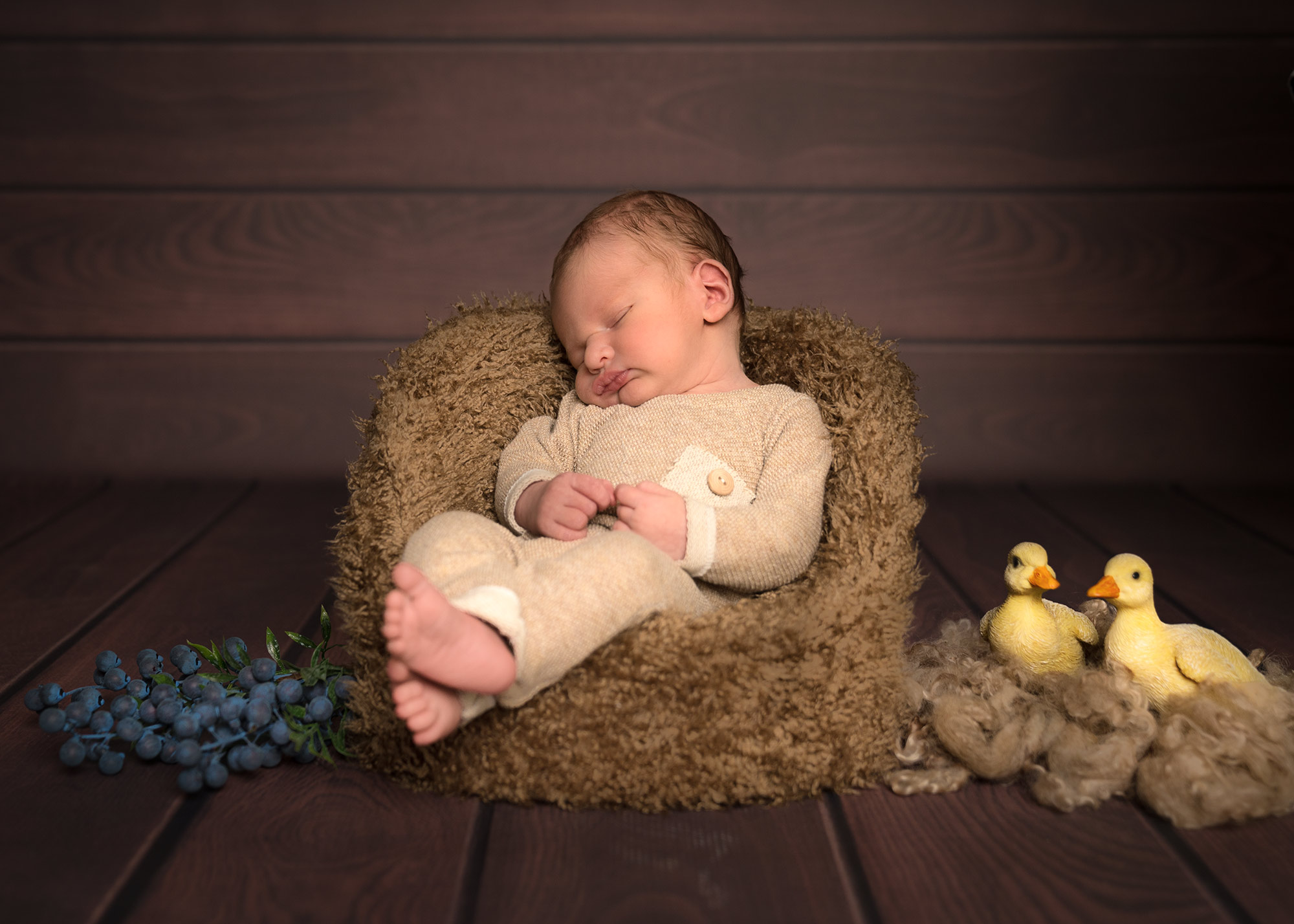 Babyshooting im Sessel mit Enten