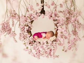 Babyshooting mit rosa Blumen